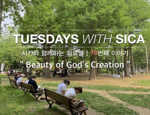 SICA와 함께 하는 화요일 – 78번째 이야기