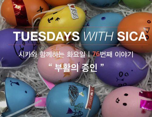 SICA와 함께 하는 화요일 – 76번째 이야기